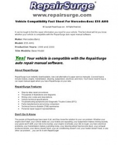 Repairsurge Auto Repair Manual Software